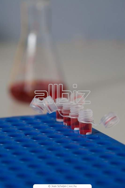Анализы крови на обнаружение паразитов