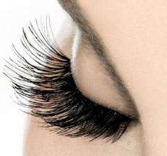 Training in volume eyelash extension