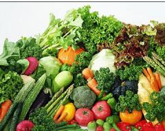 Экспорт фруктов и овощей