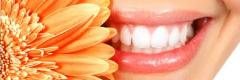 Treatment and sealing of teeth