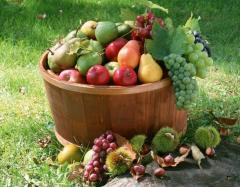 Выращивание фруктов, орехов и других культур