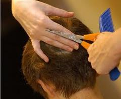 Курсы мастеров парикмахеров