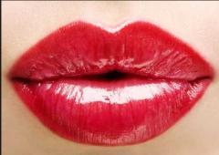 Planimetric plasticity of lips