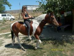 Horse walks in Moldova