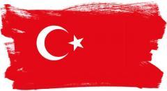Translation into Turkish language