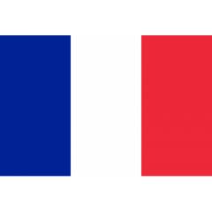 Traduceri în limba francez ă Chisina