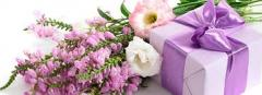 Services in floristics