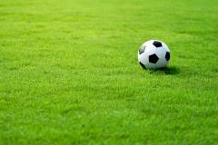 Уход за спортивными газонами