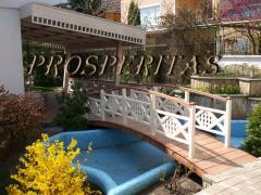 Decorative bridges, garden of Prosperitas. Gallery