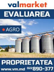 Оценка агробизнеса и связанных активов в текущих
