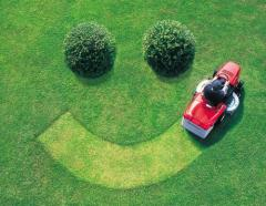 Care of lawns