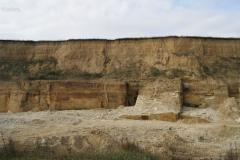 Добыча, переработка и реализация природного