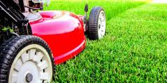 Aeration of lawns