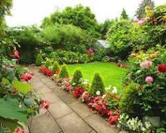 Диагностика газона, рекомендации и лечение