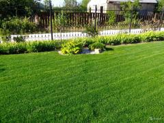 Supply of lawns with nutrients