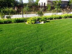 Уход за газонными покрытиями