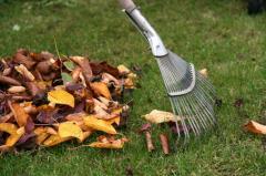 Cleaning garden sadauborka