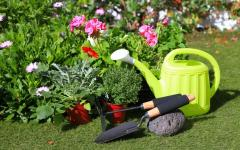 Protection of garden plants