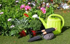 Защита садовых растений