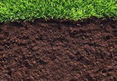 Soil fertilizer in garden