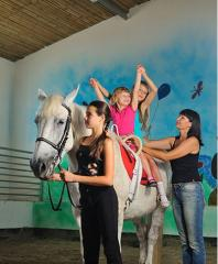 Horse hippotherapy