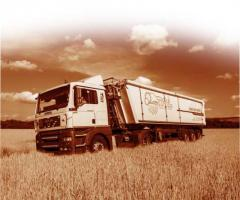 Cargo transportation of grain and other
