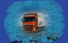 Services in the combined freight transport