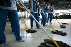 General cleaning of office