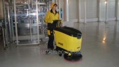 Professional cleaning of rooms and territories