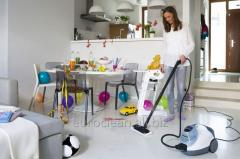 Cleaning of houses