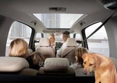 Аренда автомобилей для путешествия с семьей