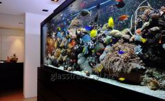 Repair of large glass aquariums