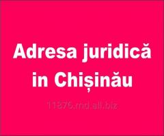 Adresa juridică in Chișinău