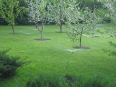 Насосные системы для полива сада