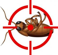 Борьба с тараканами / Combaterea gandacilor