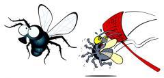 Избавление от мух / Eliminarea mustelor