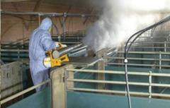 Дезинфекция птицеферм, курятников / Dezinfectarea in fermele de pasari