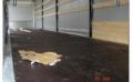 Servicii deservire tehnica si raparare camioane inchiriate
