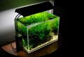 Изготовление аквариумов разных размеров