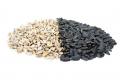Очистка кожуры семян подсолнечника (Decojirea semintei de floarea soarelui)